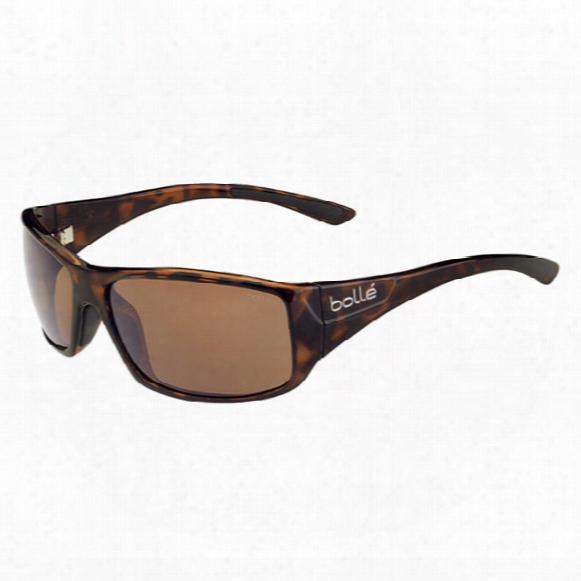Kingsnake Polarized Sunglasses - Polarized A-14 Oleo Af Lens
