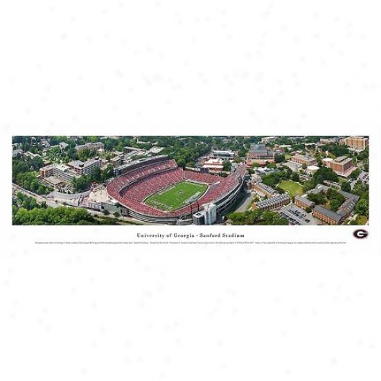 Georgia Bulldogs Sanford Stadium Panoramic Print