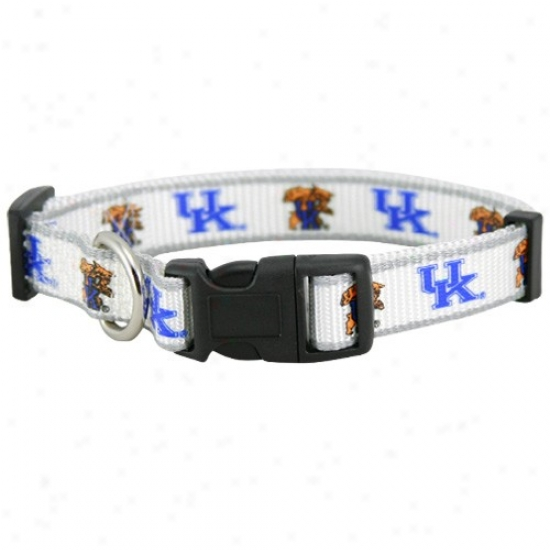 Kentucky Wldcats White Medium Adjustable Pet Collar