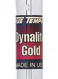 True Temper Dynallte Gold R-300 Unit Iron