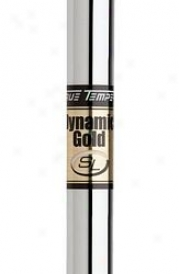 True Temper Dynamic Gold Sl Iron .370