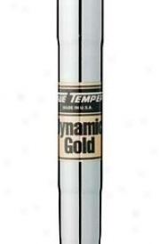 True Temper Dynamic Gold  Tap Iton Shaft .355t