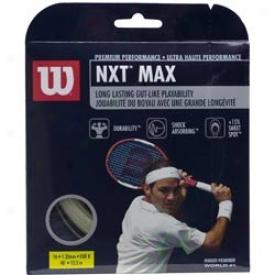 Wilson Tennis Nx5 Max String