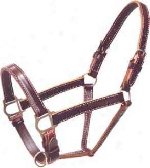 Abetta Leather Halter - Burgundy Latigo - Horse