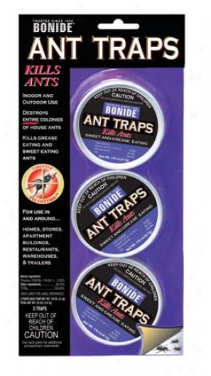 Pismire Traps Carded - 3 Pack