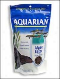 Aquarian Algae Chip Made For Algae-eatimg Fish
