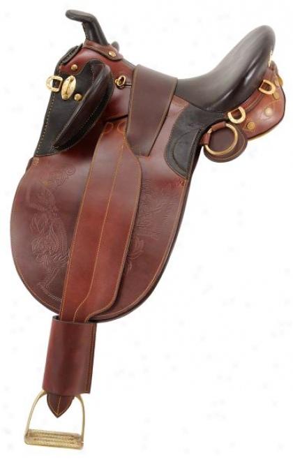 Australian Outrider Collecton Stock Poley Saddle With Horn Spacious Tree
