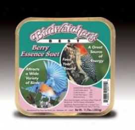 Berry Odor Suet Carry Cas3 Bird Food - Other