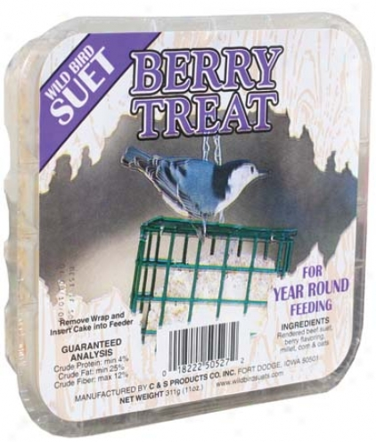 Berry Suet Food/treat For Wildbirds - 11. 75 Oz