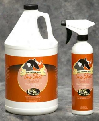 Best Shot One Shot Waterless Shampoo - 16 Oz.