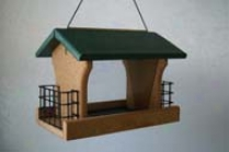 Bird Feeder Recycled Plastic With Suetc - Green - 9.5 X 12.5 X