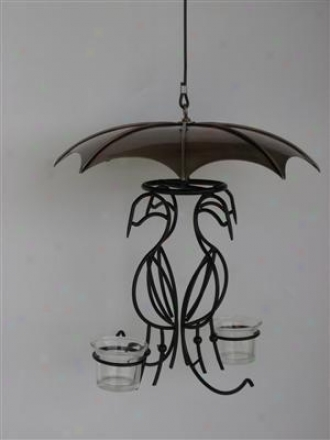 Bird Of Paradise Oriole Feeder - Brown
