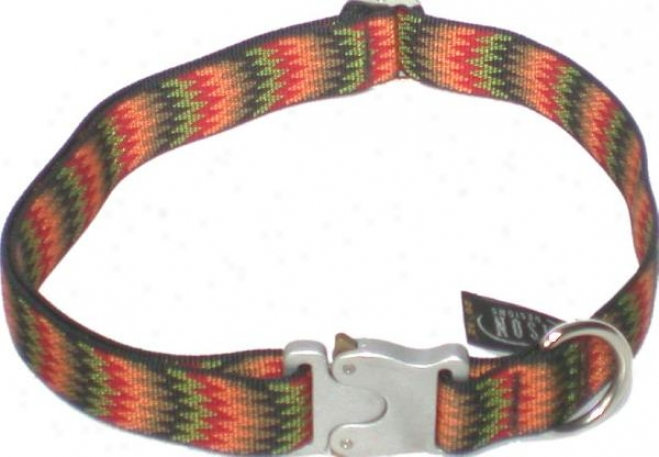 Bison Nylon Collar With  Bulldog Buckle