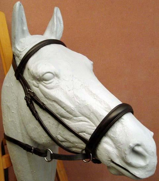 Bitless Bridle Padded Leather Headstall
