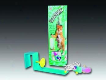 Bopcat Hanging Cat Toy