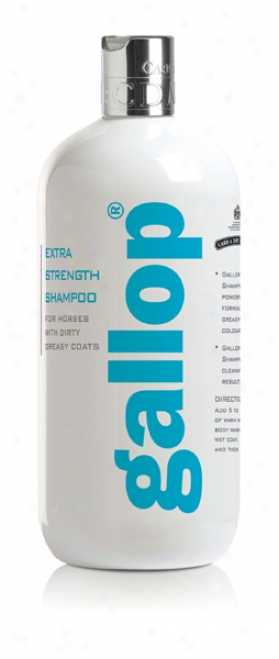 Carr & Day & Martin Horse Gallop Extra Strength Shampoo - 500ml