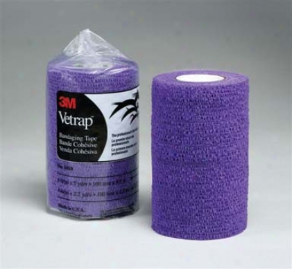Cae Of 18 - Vet Wrap - Purple
