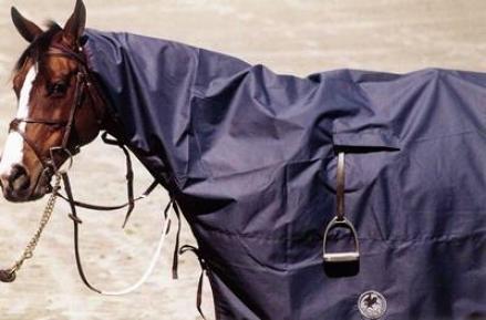 Centaur Rain Sheet
