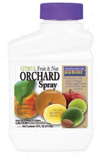 Citrus Nut Orchard Insect Sprsy Concentrate