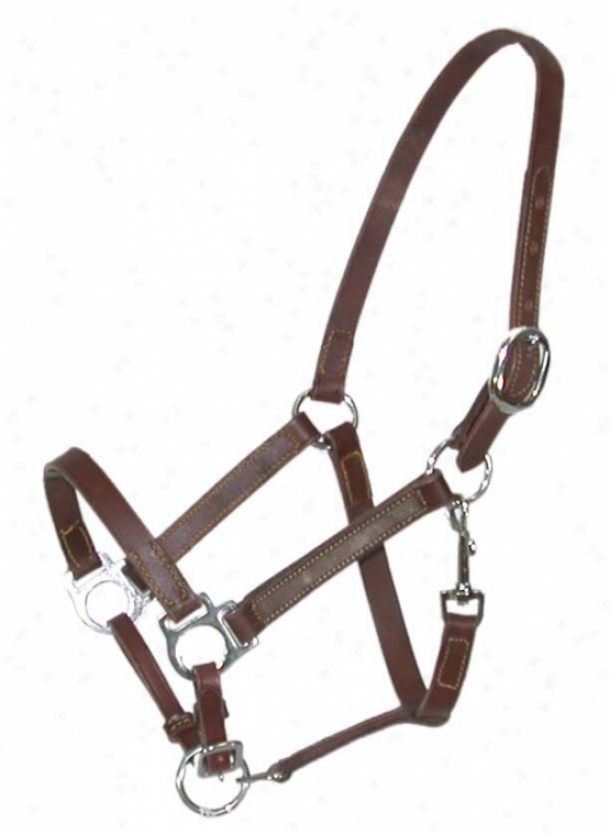 Classic Leather Turnout Halter With  Snap