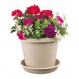 Classic Pot For Planting - Clay - 6 Inch