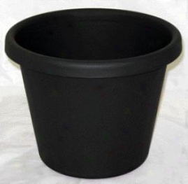 Classic Pot In quest of Planting - Evergreen - 10 Inch