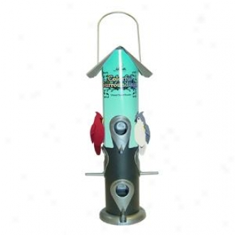 Colorful Invest Mixed Bird Feeder