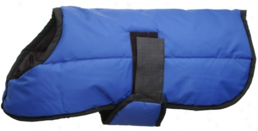 Comfy Tuff Nylon Quilted Dog Blanket
