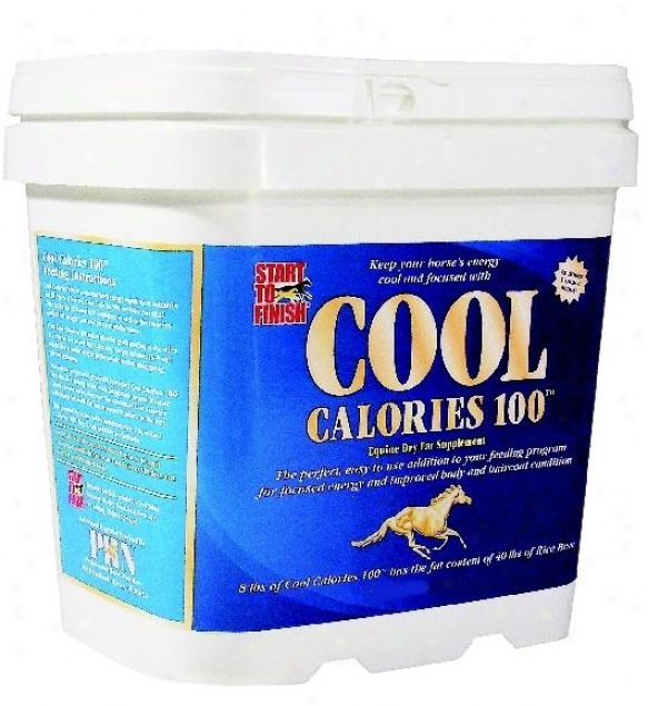 Cool Calories 100 Supplement During Horses