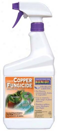 Copper Octanoate Settle Fungicide - 32 Ounce