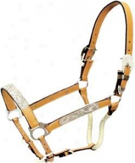 Cowboy Pro Leather Show Halter With Silver/wrapped Throat Strap - Natural Gold - Horse