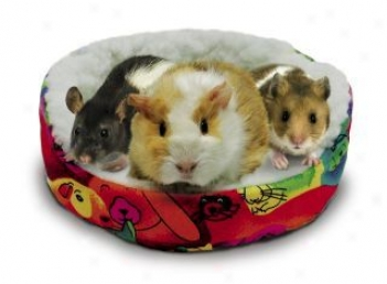 Cozy Cup Bed For Small Animals - Multicolor