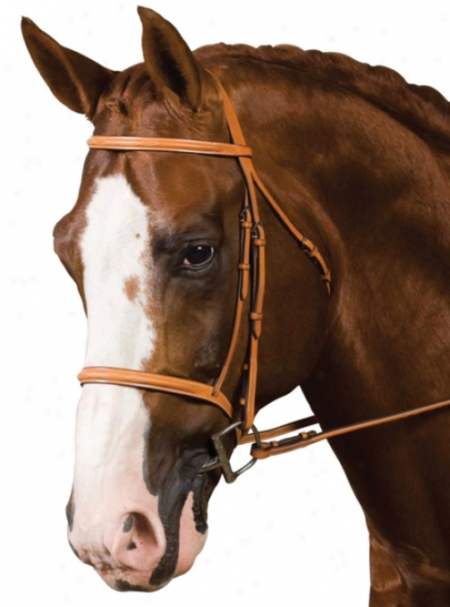 Cdosby Raised Famcy Stitched Bridle - Newmarket - Pony