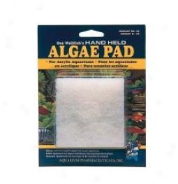 Doc Wellfish's Algae Cleaning Pad
