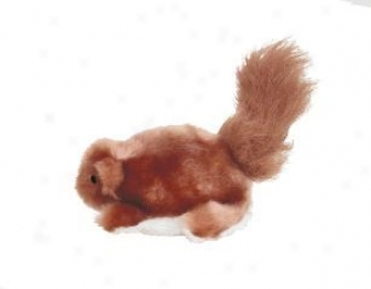 Dr Noys Squirrel Toy For Dogs