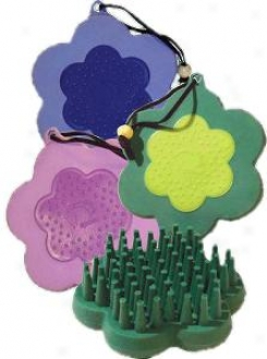 Epona Cone Flower Beat - Assorted