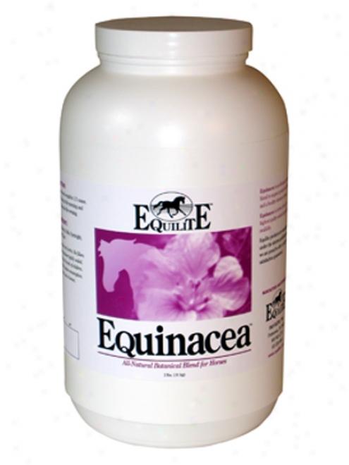 Equinacea - 2lb