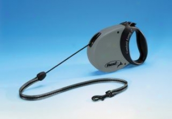 Extra Long Retractable Cord Leash - Gray - Medium