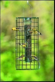 Feeder Cage