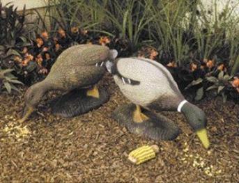 Feeding Drake Statue For Gardens