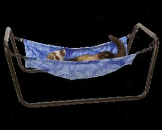 Ferret Hammock - Assorted