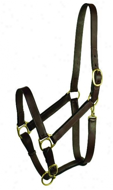 Gatsby Leather Adjustable Turnour Halter