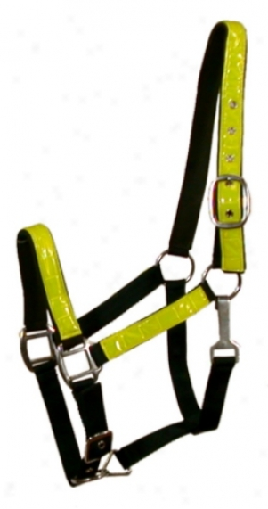 Gatsby Padded Safety Halter With Neon Reflector