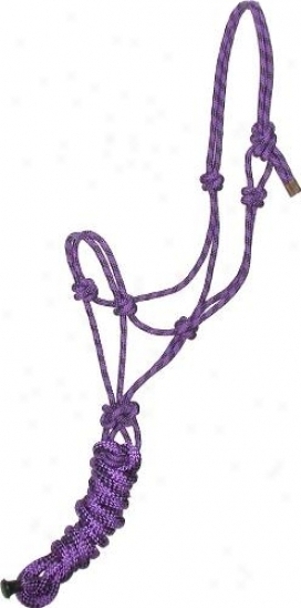 Gatsby Professional Cowboy Halter With Lead - Purple/black - Horse