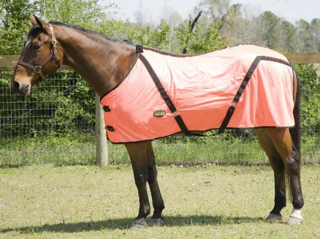 Gatsby Safety Ensnare Fly Sheet