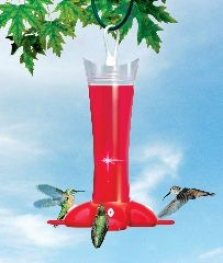 Glass Hummingbird Feeeer - Red