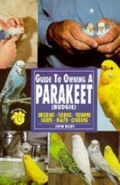 Guide To Owning A Parakeets (budgie)