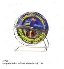 Hamster Exercise Wheel - Chrome
