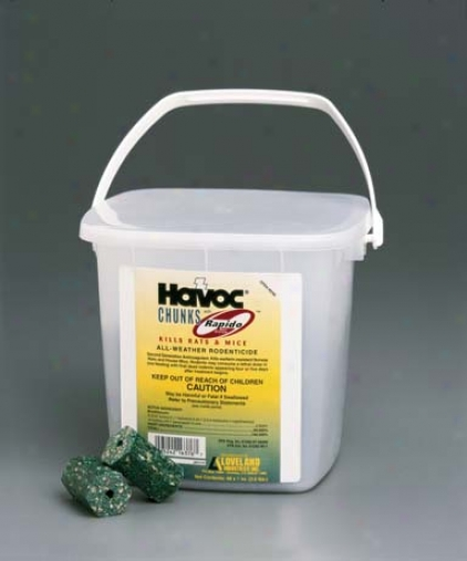 Havoc Chunk/rapido Rat/mice Control - 48 Piece