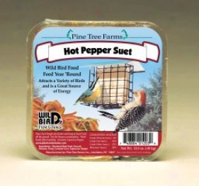 Hot Pepper Wild Bird Suet Cake - Hot Pepper - 12 Ounce